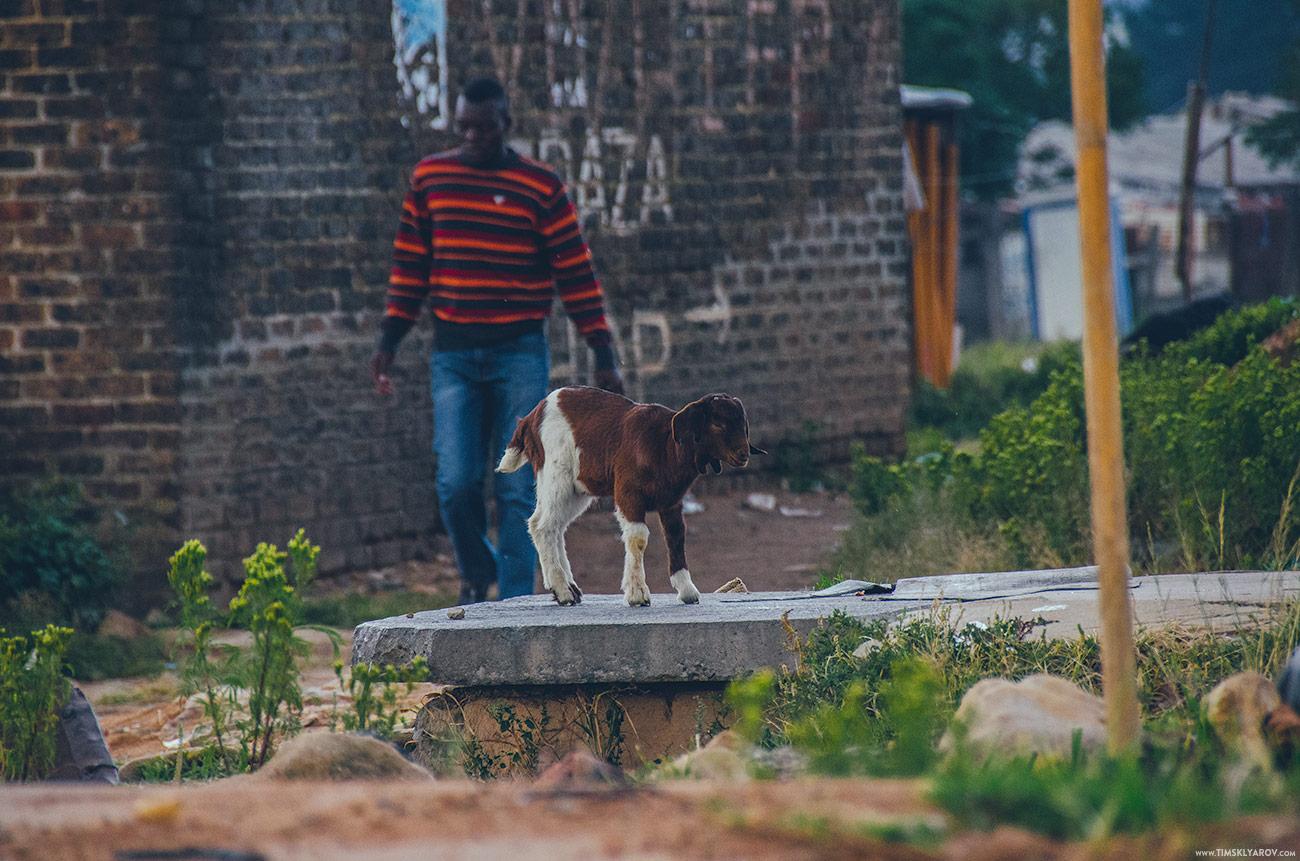 johannesburg-townships-soweto_028