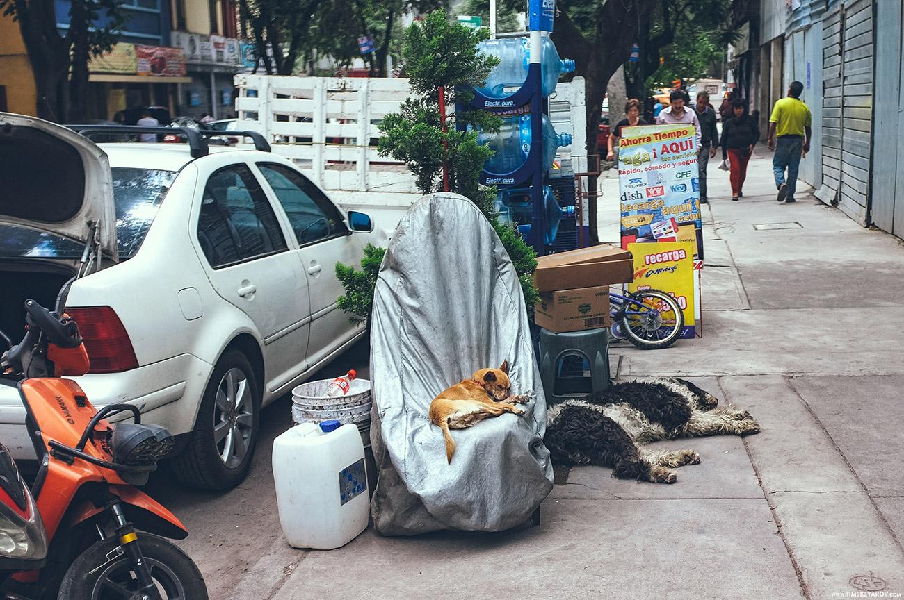 Mexico-City-031