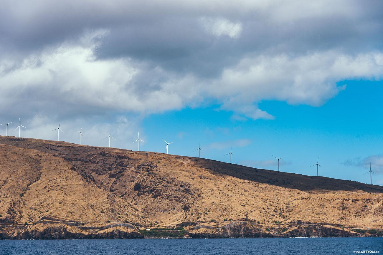 windmills-04