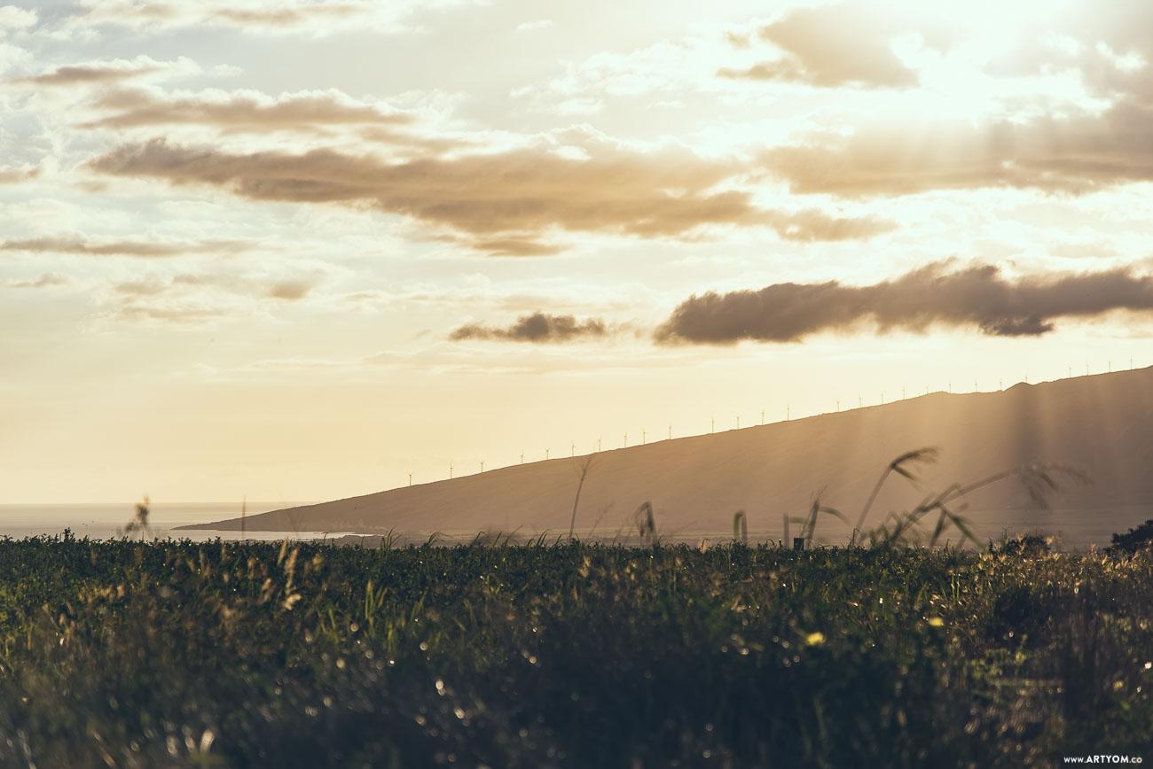 windmills-07