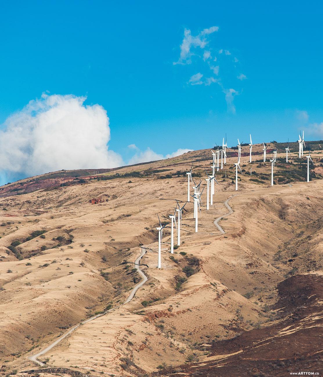 windmills-08