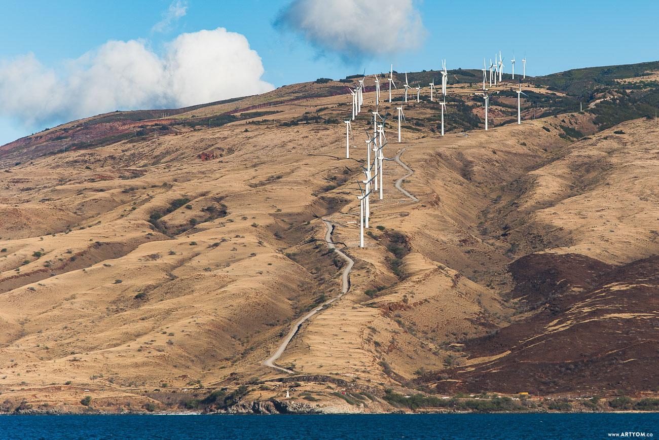 windmills-09