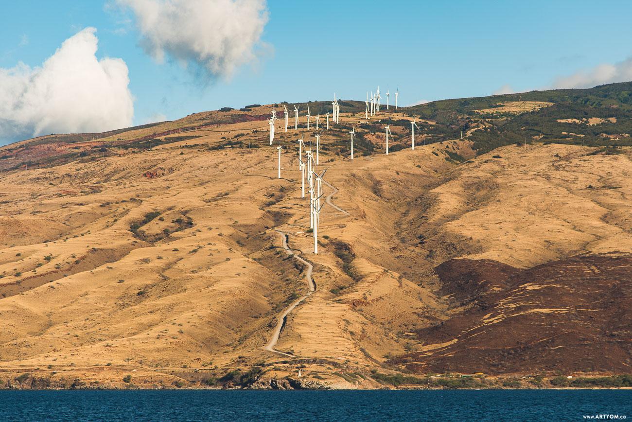 windmills-10