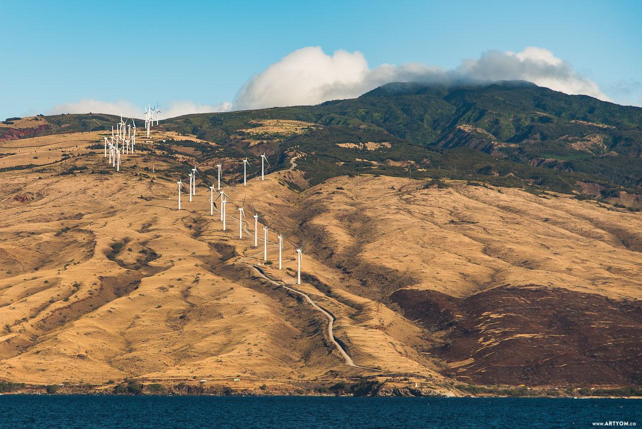 windmills-11