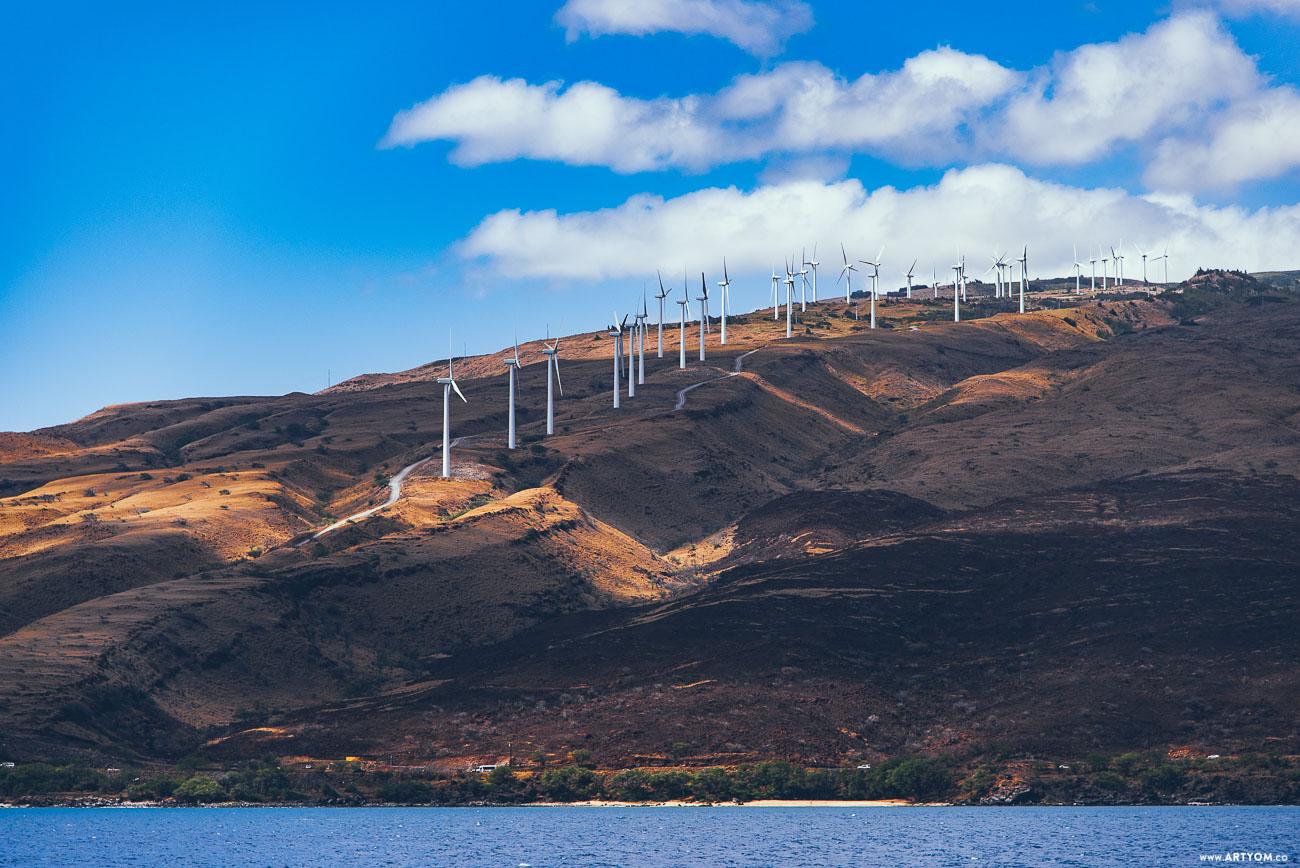 windmills-13